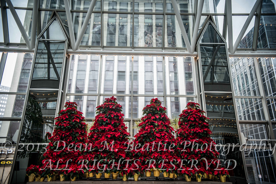 dean m beattie photography ppg winter garden